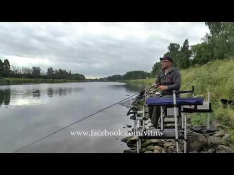 рыбалка ким фидер