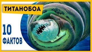ХОРОШО, ЧТО ЭТОТ ЗМЕЙ ВЫМЕР! 10 фактов о титанобоа! | Динозавры и другие вымершие животные!