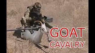 GOAT TEAM 6 DEPLOYED: Operation Bulwark: Arma 3 Zeus vanilla AAF Operations