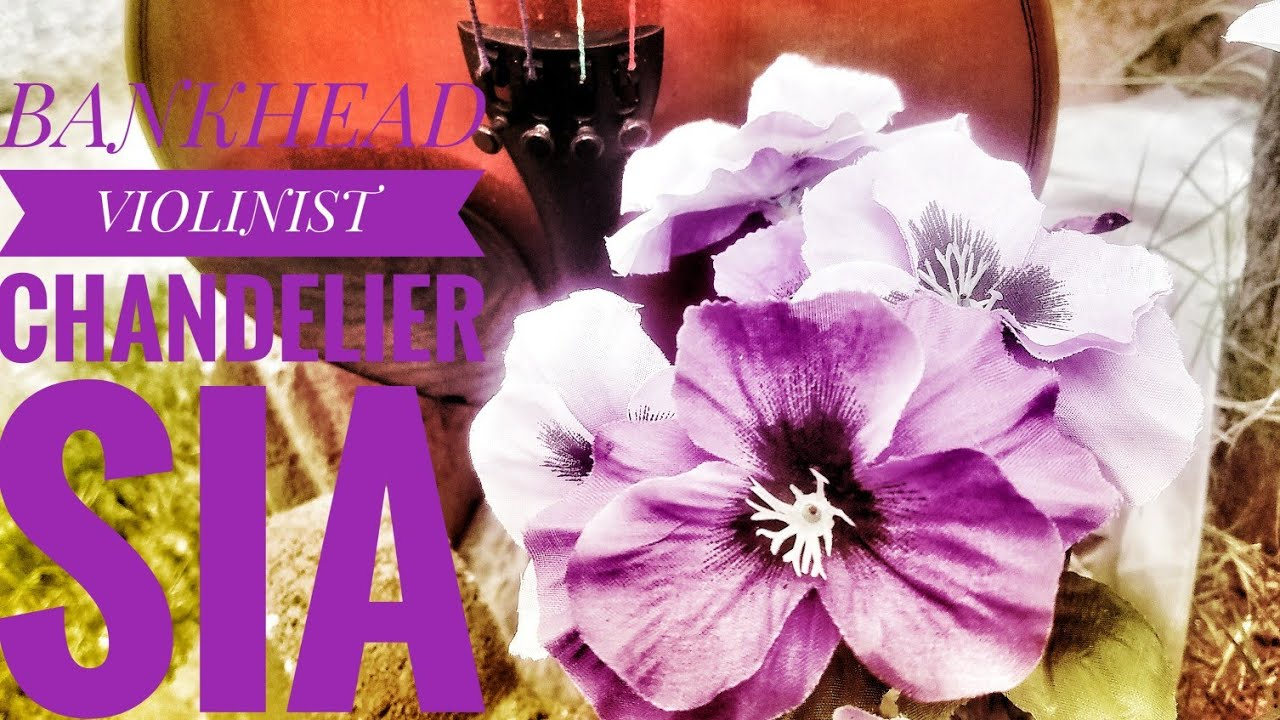 Chandelier Sia BANKHEAD VIOLINIST ( Violin Cover ) chandelier ...