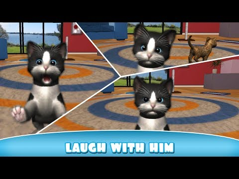 🐱 Cat Simulator: Daily Kitten 2017: NEW Funny & Cute Simulation