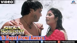 Tu Pagal Premi Awara Full Video Song | Shola Aur Shabnam | Govinda, Divya Bharati | Romantic Song