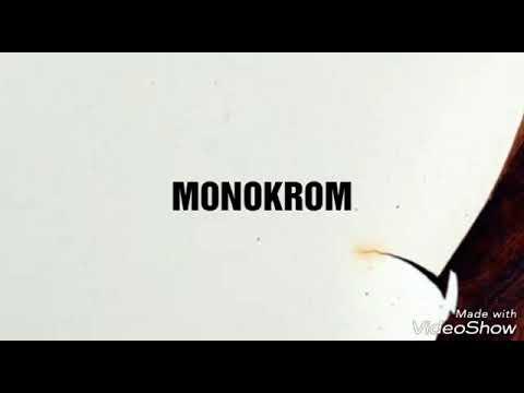 Lirik Lagu Monokrom - Tulus