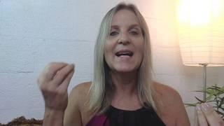 Como usar a dor para se transformar? - Conversando com Rosana De Rosa #28
