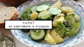 Рецепт обычного салата из картофеля и огурцов