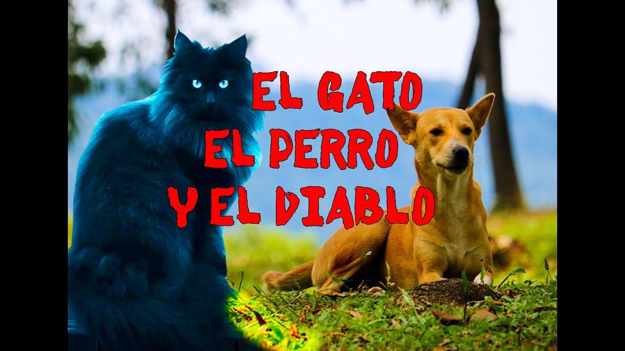 El Gato El Perro Y El Diablo Relato Youtube