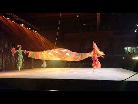 Moscow circus on ice -