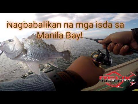 Manila Bay Fishing | Ultralight Fishing Multi Specie