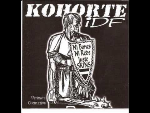 kohorte idf