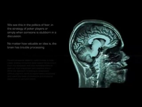 The Awakening  - Quantum Mechanics of the Human Brain and Consciousness