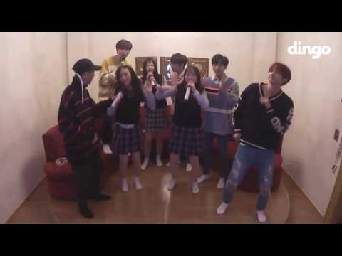 (eng sub) Dingo KTV Attack #8 B1A4