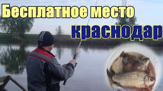 Рыбалка на реке Понура хороший клев карасей