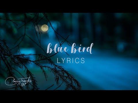 Zachary Knowles – Blue Bird (Lyrics)