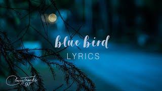 Zachary Knowles – blue bird