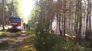 Pożar lasu w Nadleśnictwie Myszyniec - maj 2017