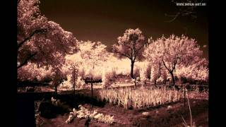 Infrared photography by Zsolt Datki PhD (music: Napoleon Boulevard)