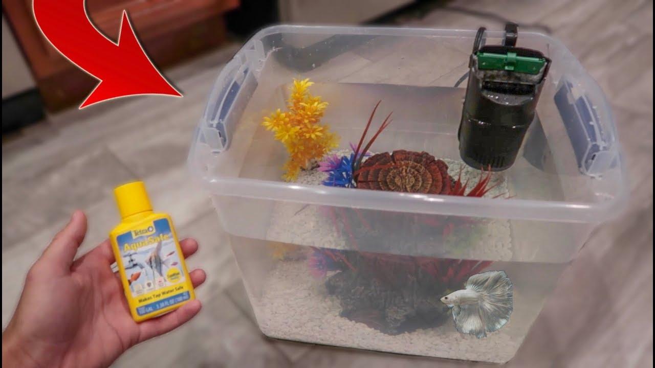 homemade-betta-fish-aquarium