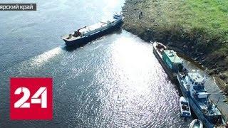 Бесконтрольная рыбалка в Красноярском крае привела к истреблению нескольких видов рыб - Россия 24
