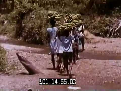 The Unconquered Plague - Schistosomiasis: Campaign in the Caribbean