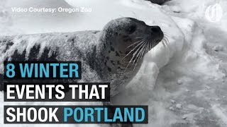 Portland's remarkable winter of 2016-17