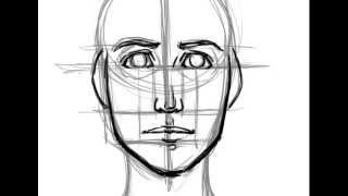 How to Draw a Face- Basic Proportions