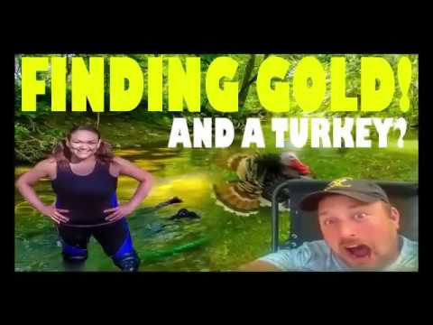 4 GRAMS OF GOLD In OHIO, Wandering Buffalos Prospecting