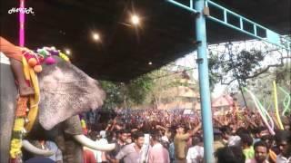 Thrissur Pooram Chenda Melam 2016 | Live - Kerala - India