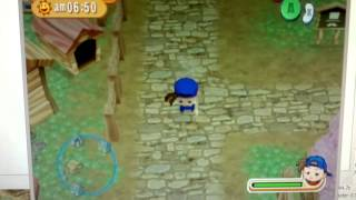 Harvest Moon Magical Melody on Dolphin Emulator Windows 8 Pro x64