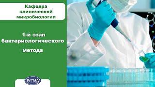 5. Первый этап бактериологического метода