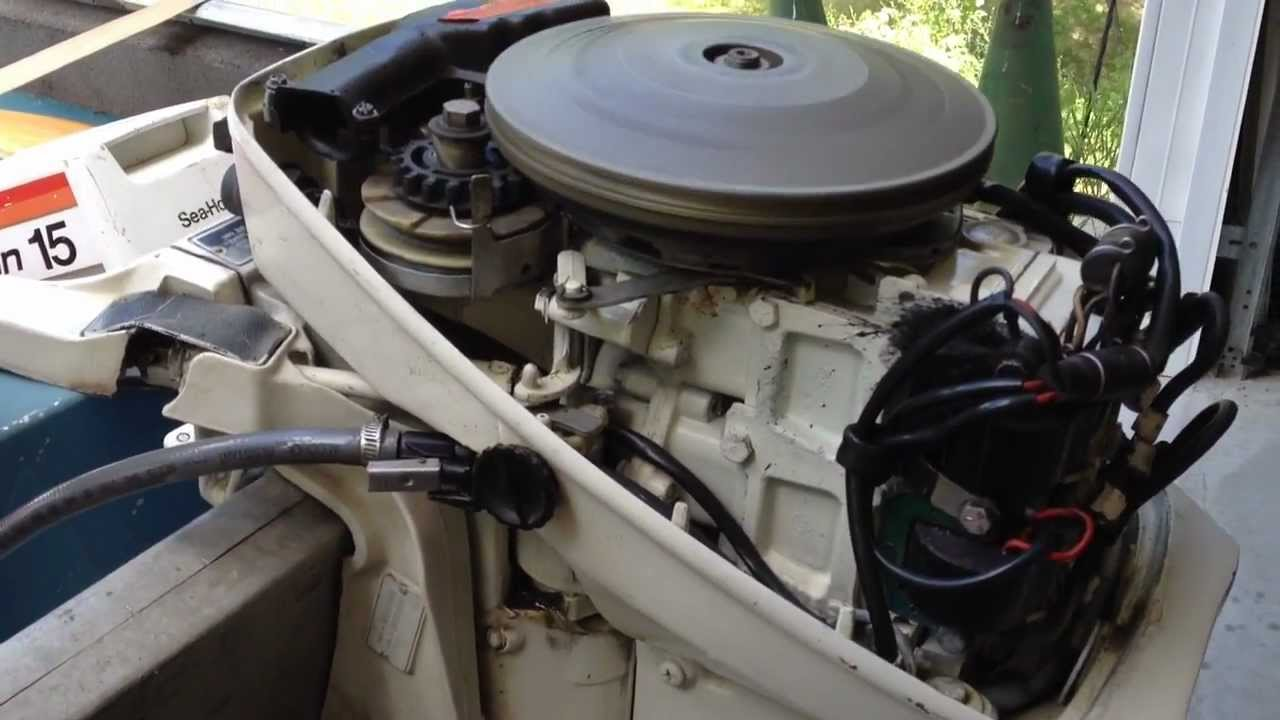 Johnson Outboard 15hp 1977 Starting After 7 Years Of