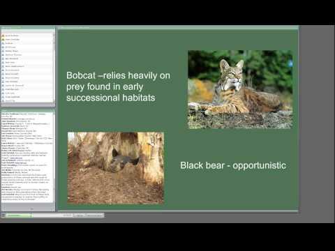 Managing early successional wildlife habitat