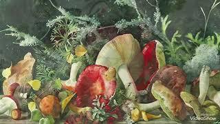 Лёгкая реальность в акварелях Елены Базановой.