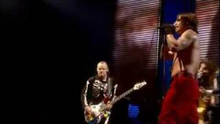 Red Hot Chili Peppers - Otherside -...