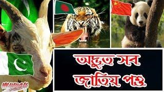অদ্ভুত সব জাতীয় পশু || National Animals Of Asian Countries