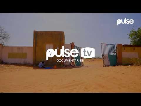 Dapchi Schoolgirls: Eyewitness Tells Pulse How Boko Haram Kidnapped 110 Girls in Yobe | Pulse TV
