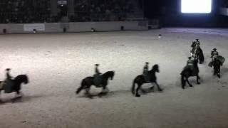 """Die Ostsee-Quadrille mit 16 Friesen zur """"Pferd & Sinfonie"""" CHIO Aachen 2015"""