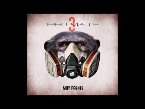 Primate - Sensatez 2016