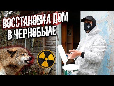 Ремонт заброшенного дома в Чернобыле. Волки на пороге. Что будет если жить в Зоне Отчуждения?