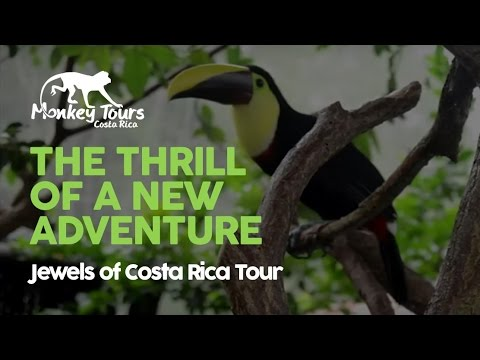 Jewels of Costa Rica Tour - 7 night City, Volcano, Forest and Beach