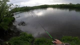 Защита от комаров THERMACELL Тест на рыбалке