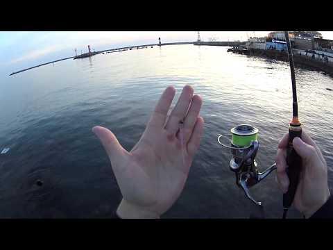 Rockfish 2019 Сочи 13 апреля ловля ставридки часть 1 Игорь Зинковский