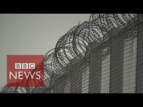 Hungary builds migrant border fence - BBC News