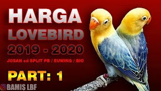 HARGA LOVEBIRD TERBARU 2019 - 2020 ( TERLENGKAP )|| BAMIS LOVEBIRD farm