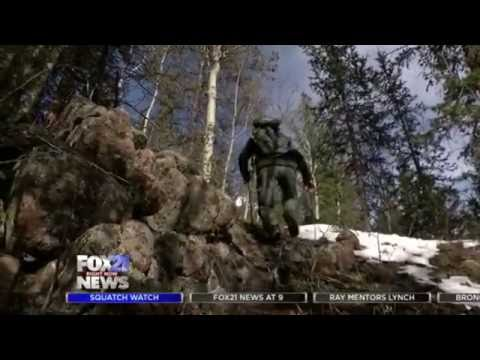 "Bigfoot Sighted Regularly In Colorado , Residents ""We see them all the time"""