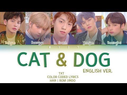 txt-(투모로우바이투게더)---cat-&-dog-(english-ver.)-(color-coded-lyrics-indo/eng/가사)