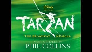 Phil Collins - Son of a man ( Tarzan soundtrack cover)