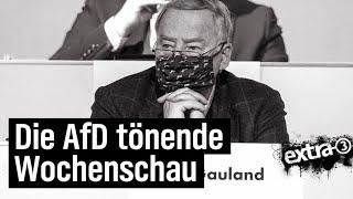 AfD tönende Wochenschau (4)