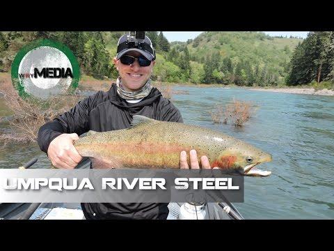 Umpqua River Steelhead | UnderCover Sportsman