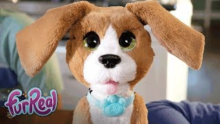 FurReal Friends - 'Chatty Charlie, the Barkin' Beagle' Official TV Commercial