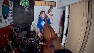 Thomann Double bass 111SN 3/4 unboxing